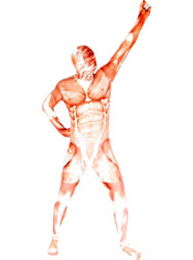 Muscle Morphsuit Adult
